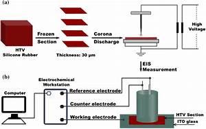 Schematic Diagram Of Frozen Section  Corona Discharge