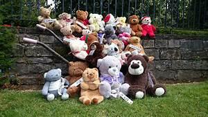 Teddy Bear Hund : digital sentinel teddy bear hunt at saughton park ~ A.2002-acura-tl-radio.info Haus und Dekorationen