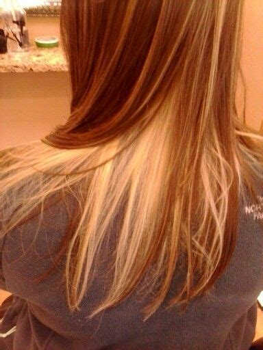 Hair With Brown Underneath Hairstyles by Best 25 Underneath Hair Colors Ideas On