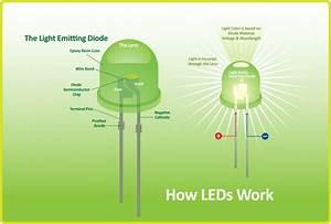 Leds  Lighting The Way Everywhere