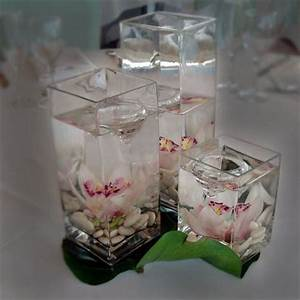 22 Best Images About Just The Flower Cymbidium On