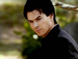 Damon Salvatore - Damon Salvatore Wallpaper (24874821 ...