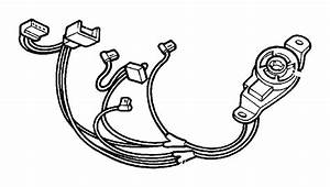 2002 Dodge Dakota Wiring  Overhead Console  Trim   All Trim Codes