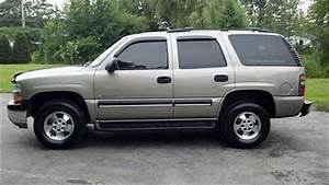 Police Search For Stolen Vehicle In Del