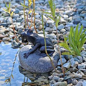 Steine Für Gartenteich : wasserspeier figur frosch auf stein f r gartenteich brunnenbecken dekofigur wasserspiel teich ~ Sanjose-hotels-ca.com Haus und Dekorationen
