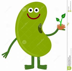 Bean and plant stock illustration. Illustration of sprout ...