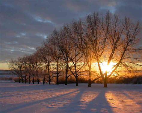 Good Morning Sunshine | Love Is Dope