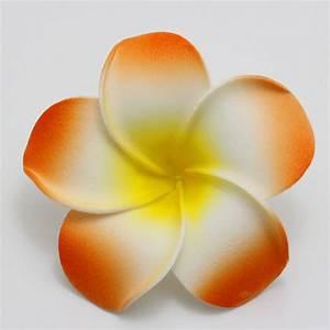 Popular Orange Plumeria-Buy Cheap Orange Plumeria lots ...