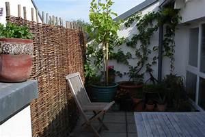 Sichtschutz Aus Weide : naturgeflechte ebay shops ~ Lizthompson.info Haus und Dekorationen