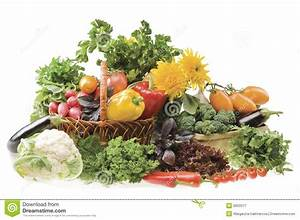 Big Group Of Vegetable Food Objects Royalty Free Stock ...