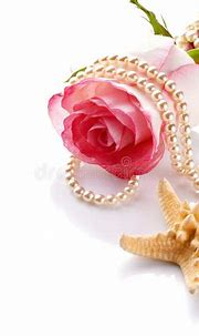 Pink Rose With A Pearl Beads And A Starfish. Stock Image ...