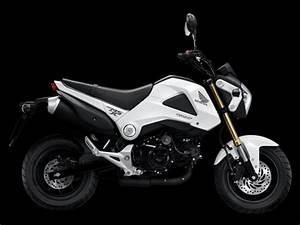 Petite Moto Honda : petite moto 125cc pour camping car ~ Mglfilm.com Idées de Décoration