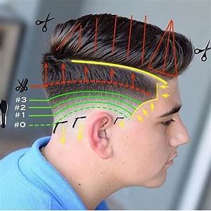 68 Best Diagram Haircut Images On Pinterest