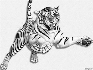 Weißer Wurm Katze : fotos tiger gro e katze tiere gezeichnet wei er hintergrund ~ Markanthonyermac.com Haus und Dekorationen