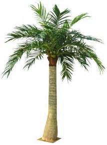 artificial outdoor palm tree gzkj 255 h1105 china manufacturer artificial crafts crafts