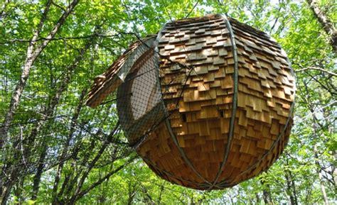 chambre d hote org cabane dans les arbres bretagne cabane perchée morbihan
