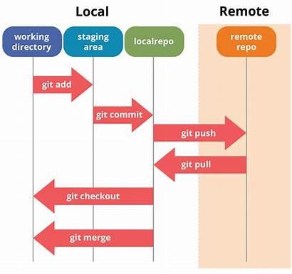 Git Tutorial Difference Between Edureka Diagram Commands