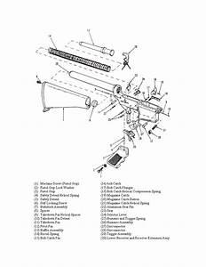Kg 7531  Ar 15 Lower Diagram Schematic Wiring