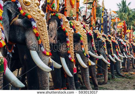 kerala stock images royalty  images vectors