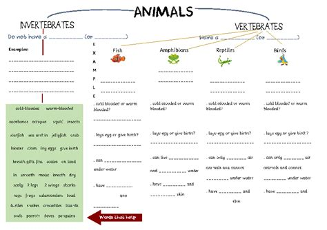worksheet animal classification