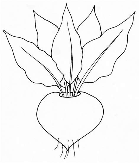 imprime le dessin  colorier de legume