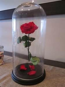 Rose Eternelle Sous Cloche : d coration de salle la rose sous cloche de la belle et ~ Farleysfitness.com Idées de Décoration