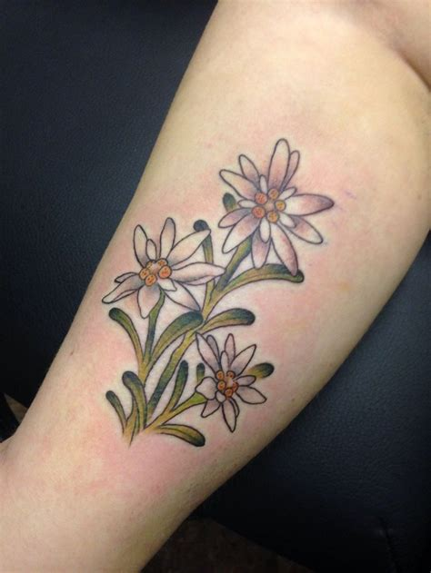 image result  edelweiss tattoo edelweiss tattoo