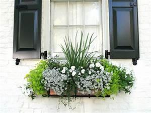 Jardiniere Fleurie Plein Soleil : fleur pampa ~ Melissatoandfro.com Idées de Décoration