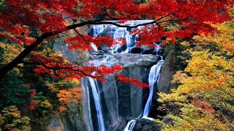 waterfall wallpapers  screensavers  images
