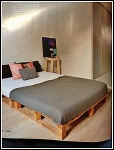 Europaletten Bett Bauen Anleitung Betten House Und