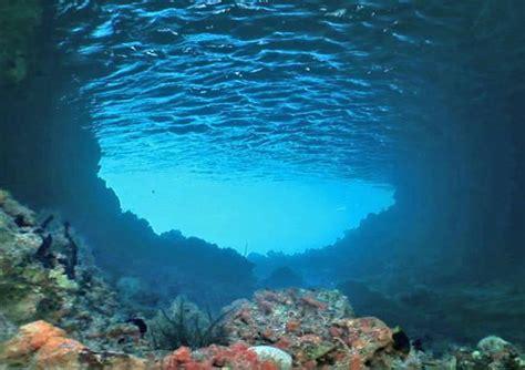 underwater wall murals sea wallpaper wallpaperinkcouk