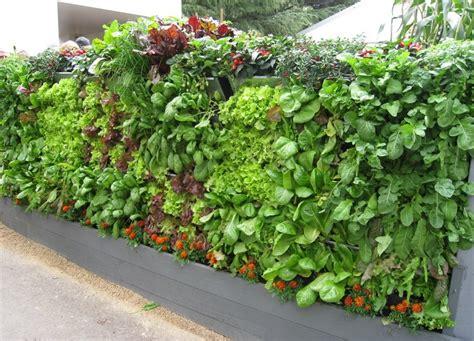 diy closet system 20 vertical vegetable garden ideas total survival