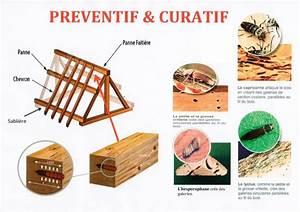 Traitement Bois Charpente : traitement charpente leader toiture ~ Edinachiropracticcenter.com Idées de Décoration