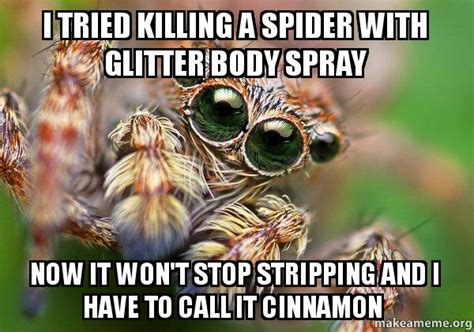 Killing Spiders Meme - i tried killing a spider with glitter body spray now it won t stop stripping and i have to call
