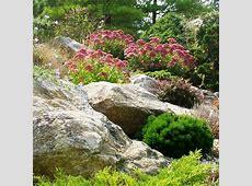LowWater Rock Gardens HGTV