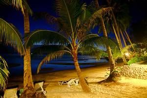 Bilder Von Palmen : bilder von thailand koh samui strand meer natur sand palmen tropen ~ Frokenaadalensverden.com Haus und Dekorationen