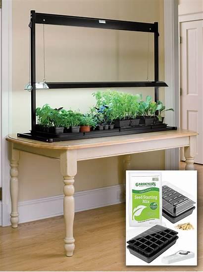 Grow Lights Garden Starter Tabletop Seed Starting