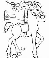 Horse Coloring Pages Fun sketch template