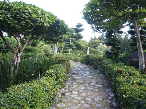 national botanical gardens the top 10 things to do and see in santo domingo
