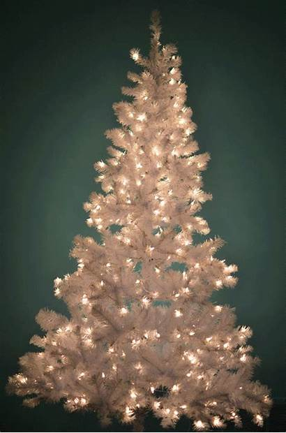 Tree Decorating Christmas Did Animation