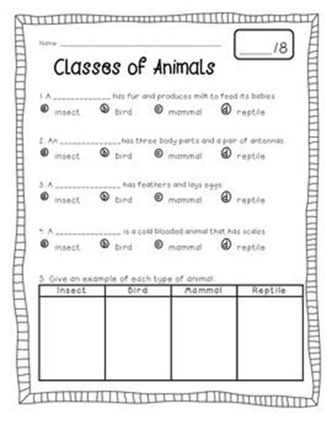 animal classification freebie animal classification