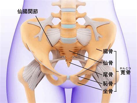 妊婦 足 の 付け根 痛み