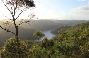berowra valley national park nsw national parks