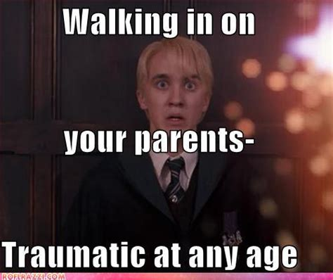 Draco Memes - funny harry potter memes draco www pixshark com images galleries with a bite