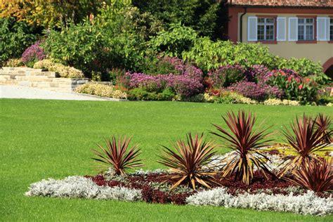 Yuccapalme Im Garten Einpflanzen » So Wird's Gemacht