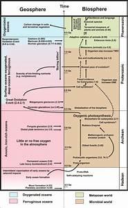 Time Line Of Geosphere U2013biosphere Coevolution On Earth