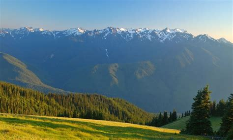 Hurricane Ridge In Washingtons Olympic National Park