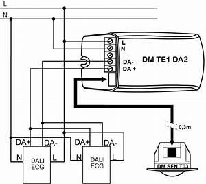 Detector De Movimiento Para Luminarias Dali - Dm Te1 Da2
