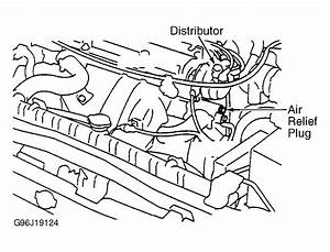 2001 Nissan Pathfinder Serpentine Belt Routing And Timing