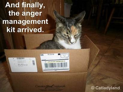Anger Management Funny Grief Quotes Denial Don